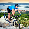 Cycle and Hike Cruises